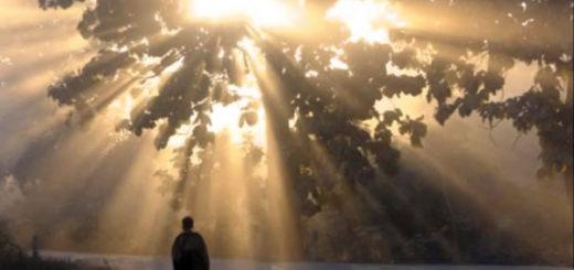 神による人類救済プログラムの全体像