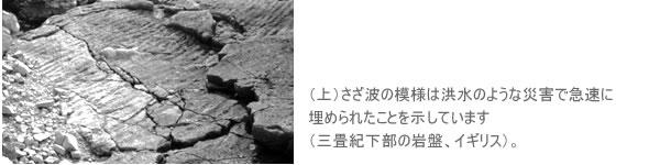 (上)さざ波の模様は洪水のような災害で急速に埋められたことを示しています(三畳紀下部の岩盤、イギリス)。
