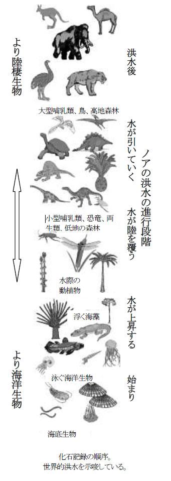 化石記録の順序。 世界的洪水を示唆している。