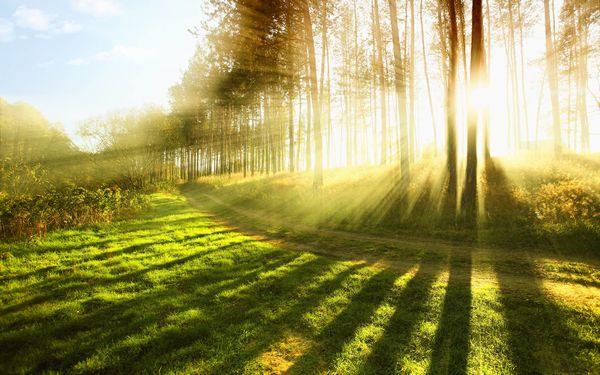 これから世界で起こること(3) 千年王国(メシア的王国)の支配と祝福