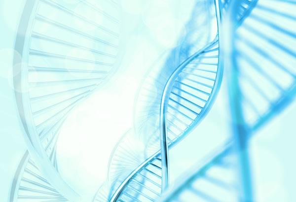 最新の遺伝子研究がダーウィンを進化論を否定?生命の90%はヒトと同時期に出現した